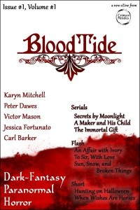 Bloodtide Issue1Vol1 Cover
